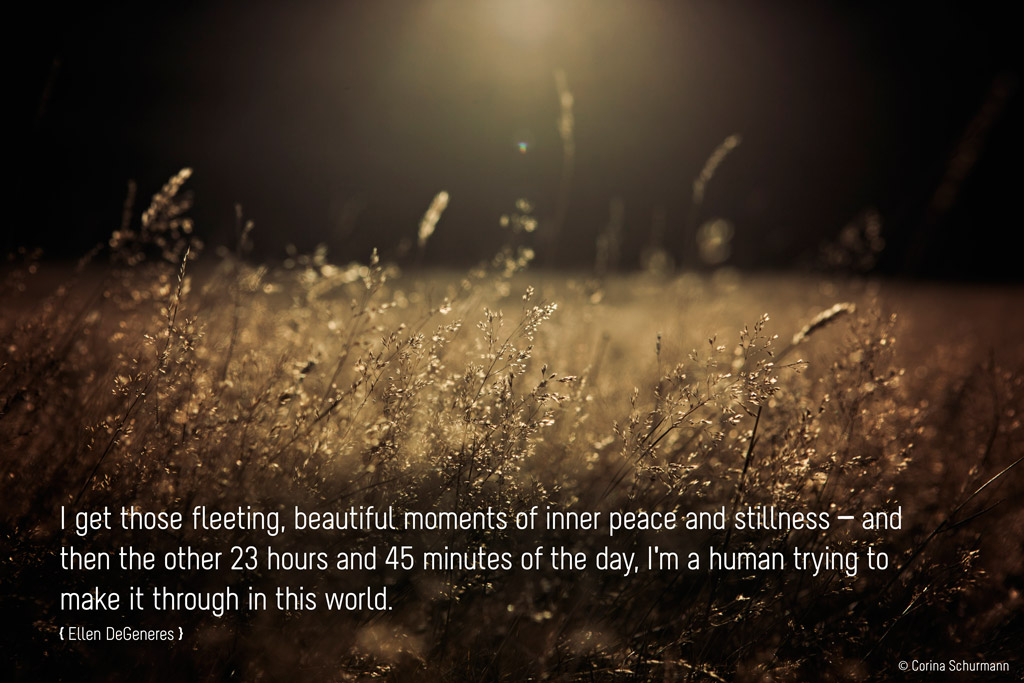 Fleeting Moments - Quote by Ellen De Generes