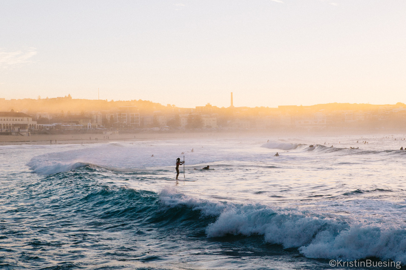 Paddle boarding and surfing in Bondi